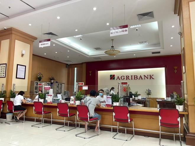 Agribank dành thêm 30.000 tỷ đồng tín dụng ưu đãi hỗ trợ khách hàng 19 tỉnh, thành phố phía Nam ảnh 1
