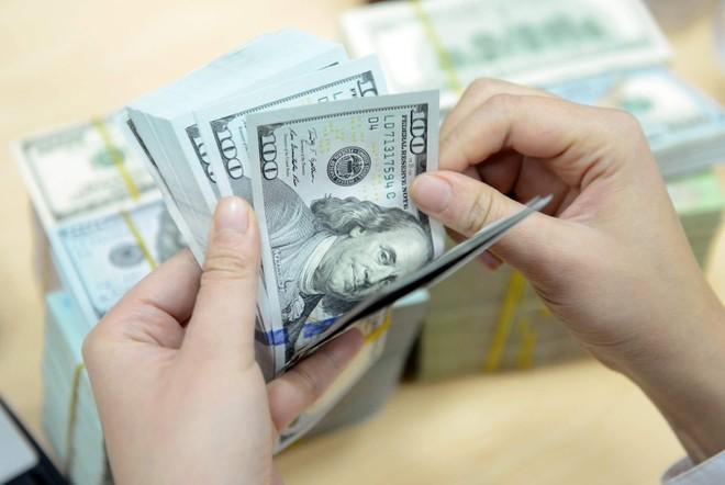 HSBC: Tỷ giá USD/VND có thể tăng trở lại trong năm 2022, doanh nghiệp cần biện pháp phòng vệ ảnh 1