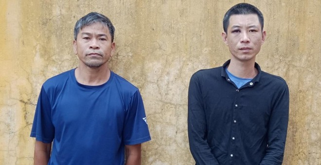 Trộm 22 con lợn giống, 2 người đàn ông bị khởi tố ảnh 1