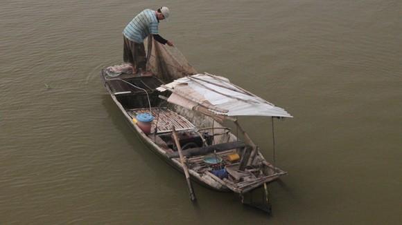 Tận diệt cá trên sông Lô ảnh 1