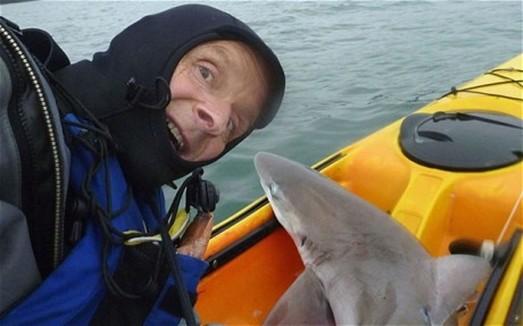 """Cá mập """"kéo lê"""" một ngư dân ảnh 1"""