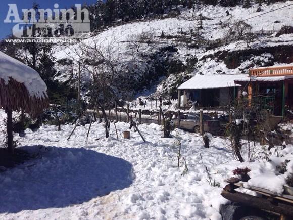 Nắng tuyết Sa Pa hút hồn du khách thập phương ảnh 5