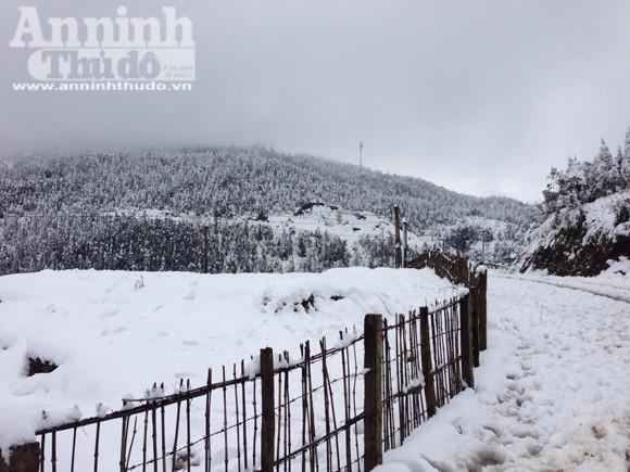 Nắng tuyết Sa Pa hút hồn du khách thập phương ảnh 3