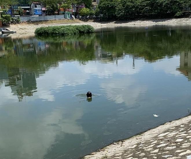 Công an phường Khương Thượng kịp thời cứu giúp một phụ nữ nhảy hồ tự tử ảnh 1