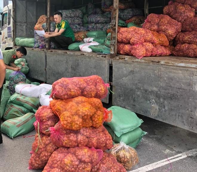 Lực lượng Công an hỗ trợ tiêu thụ nông sản cho nhân dân 2 tỉnh Hải Dương - Nam Định ảnh 1
