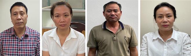 Cơ quan điều tra Bộ Công an khởi tố 4 bị can liên quan dự án trồng mới cây xanh tại Hà Nội ảnh 1