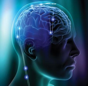 Chế độ ăn giúp phòng ngừa teo não
