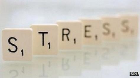 Tìm hiểu vai trò của stress trong sa sút trí tuệ