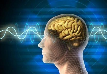Những cách tăng cường trí não ảnh 1