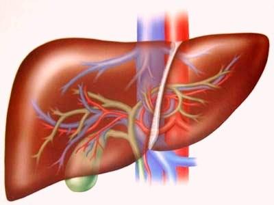 FDA phê chuẩn thuốc mới điều trị viêm gan C ảnh 1