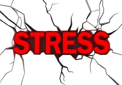 Mẹo kiểm soát stress ảnh 1