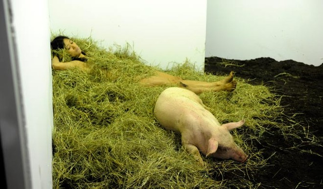 Nữ nghệ sĩ sống trần truồng với lợn trong 104 giờ ảnh 5