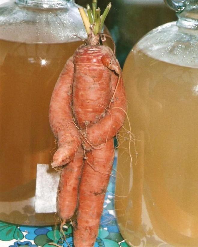 Phát hiện củ cà rốt mang hình người ảnh 1
