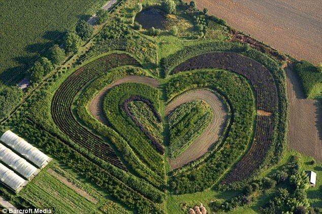 Những trái tim của tạo hóa thiên nhiên