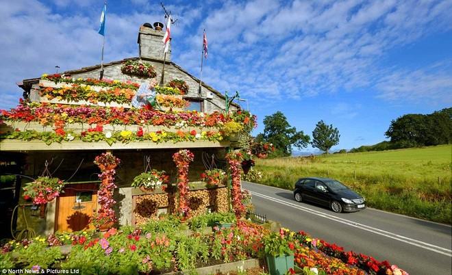 Kỳ thú ngôi nhà được bao phủ bởi hoa tươi ảnh 2