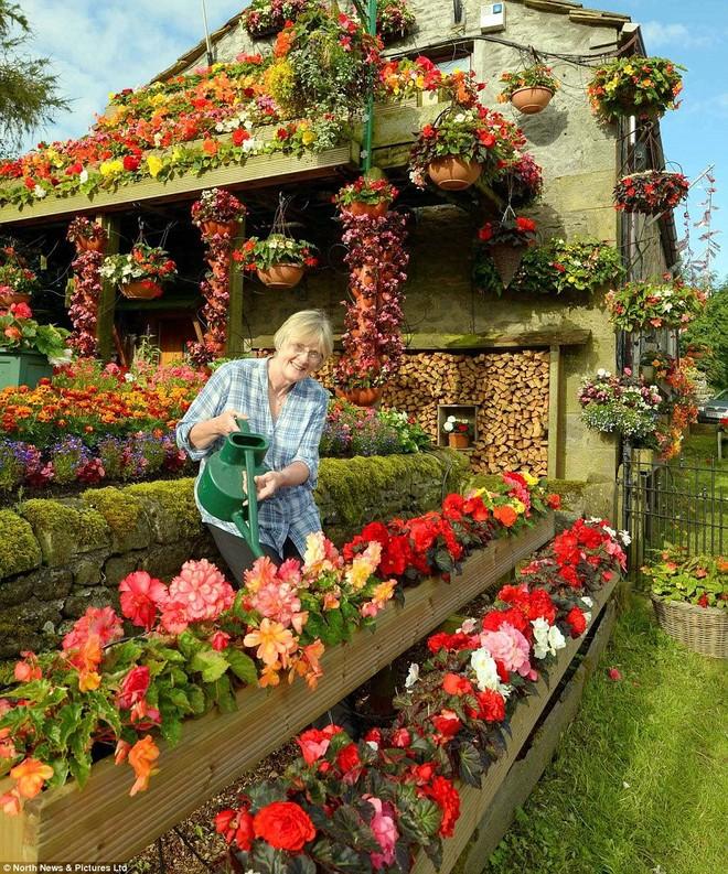 Kỳ thú ngôi nhà được bao phủ bởi hoa tươi ảnh 5