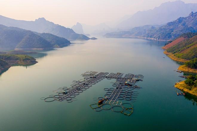 Cận cảnh trang trại độc quyền nhân giống cá tầm triệu USD tại Việt Nam ảnh 3