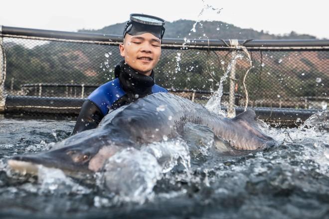 Cận cảnh trang trại độc quyền nhân giống cá tầm triệu USD tại Việt Nam ảnh 4
