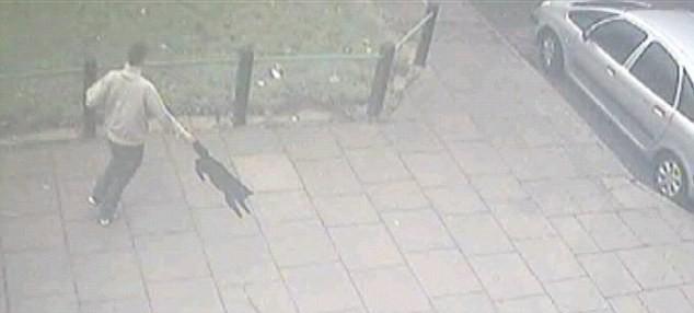 Video gây sốc: một thanh niên hành hạ mèo dã man ảnh 2
