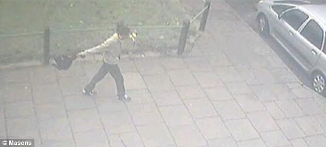 Video gây sốc: một thanh niên hành hạ mèo dã man ảnh 1