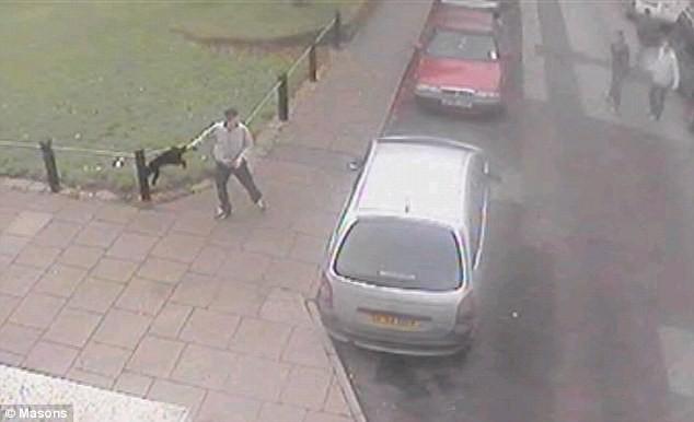 Video gây sốc: một thanh niên hành hạ mèo dã man ảnh 4
