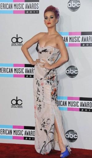 Ngắm dàn sao tại American Music Awards ảnh 5