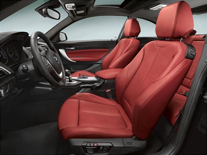 BMW M235i xuất hiện đầy ấn tượng ở Detroit Motor Show ảnh 5