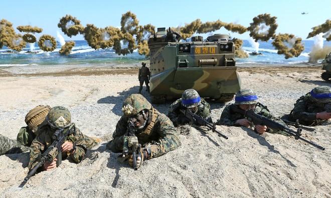Hàn Quốc - Mỹ thu nhỏ quy mô tập trận mùa xuân ảnh 1
