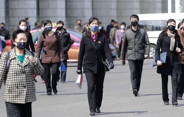 WHO xác nhận Triều Tiên chưa có ca nhiễm Covid-19 nào ảnh 1