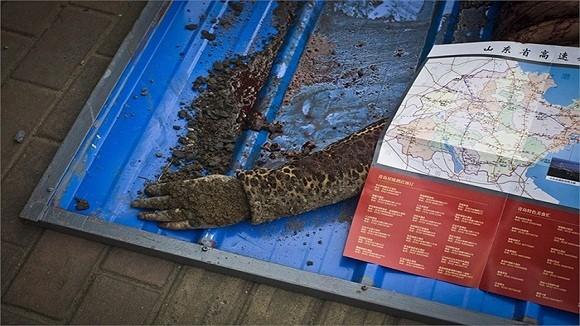 Hình ảnh vụ nổ như bị ném bom rải thảm ở Thanh Đảo - Trung Quốc ảnh 7