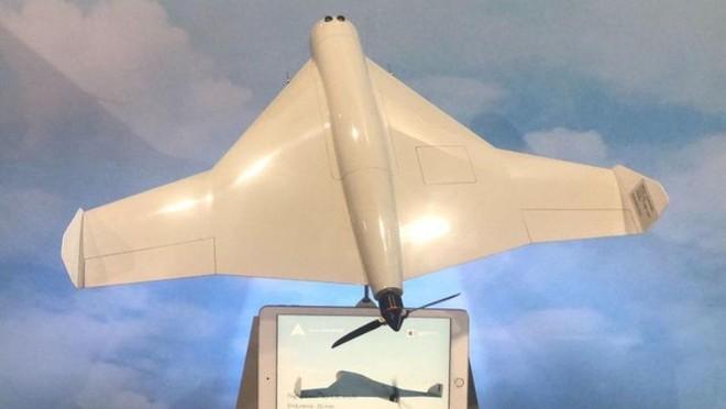 UAV Kamikaze Nga đột phá thành công các khu vực phòng không của NATO ảnh 1