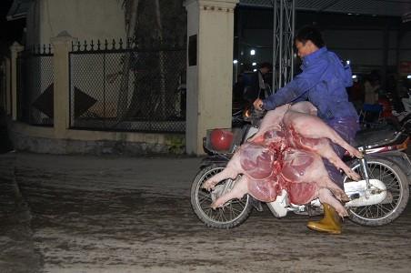 """Lợn vẫn """"trần truồng"""" ùn ùn ra chợ ảnh 1"""