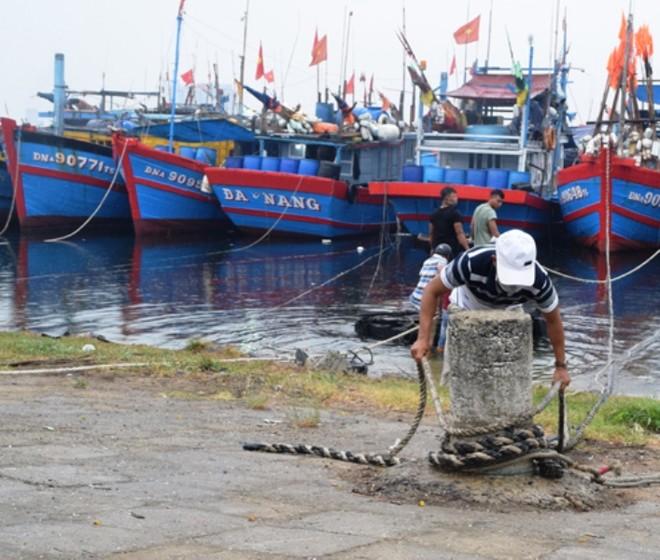 Đà Nẵng xử lý nghiêm người không chịu di dời, Quảng Trị sơ tán 50.000 người tránh bão số 9 ảnh 1