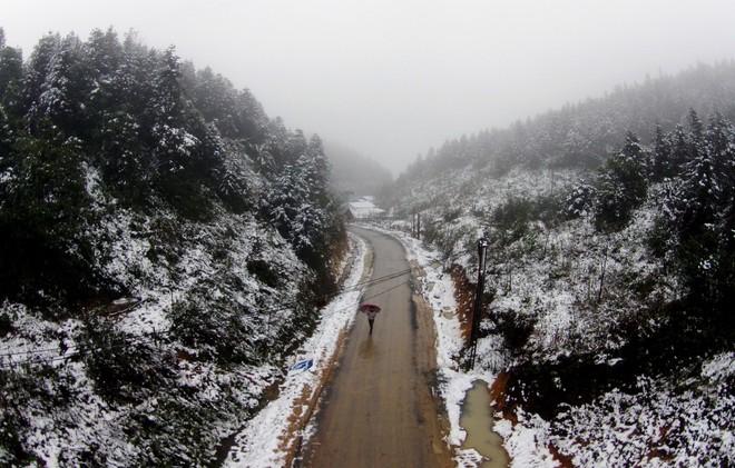 Băng giá và sương muối phủ trắng Fanxipan, nhiều nơi ở Bắc bộ rét đậm ảnh 1