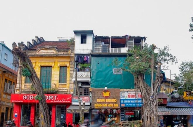 Đánh chuyển, chặt hạ 40 cây xanh ở phố Trần Hưng Đạo để thi công ga ngầm metro ảnh 1