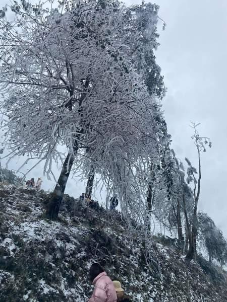Rét hại kèm băng giá, mưa tuyết ở Bắc bộ có còn tiếp diễn? ảnh 3