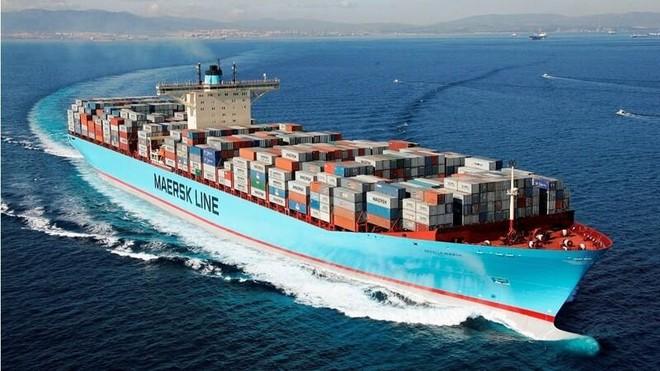 """12 hãng tàu nằm trong """"danh sách đen"""" bị Cục Hàng hải kiểm tra về giá cước ảnh 1"""