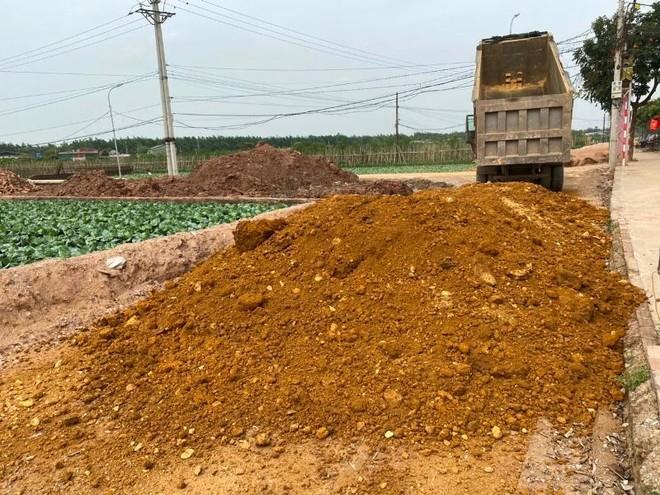 Hà Nội: Dự án làm đường trăm tỷ ở Hoài Đức dùng đất lậu, chủ đầu tư không hay biết? ảnh 2