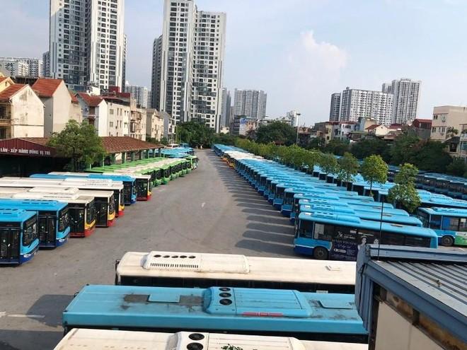 Hà Nội: Vì sao xe buýt vẫn chưa thể hoạt động lại từ hôm nay, 1-10? ảnh 1