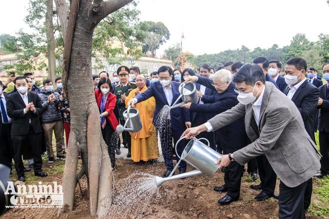 Tổng Bí thư, Chủ tịch nước Nguyễn Phú Trọng trồng cây đầu Xuân, tản bộ tại Hoàng Thành Thăng Long ảnh 1