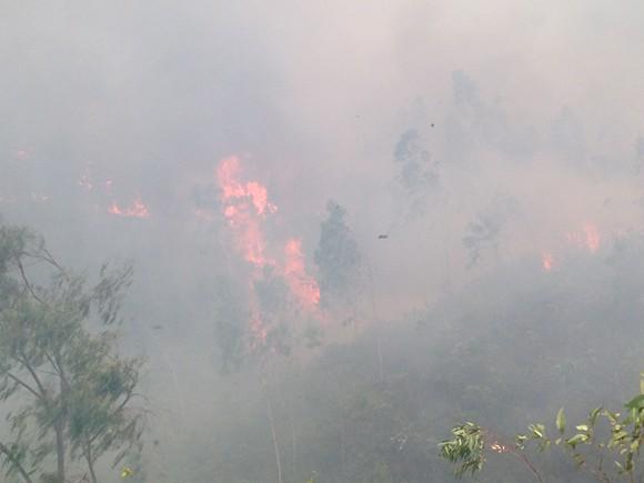 Nắng nóng gay gắt, liên tục xảy ra cháy rừng ảnh 2