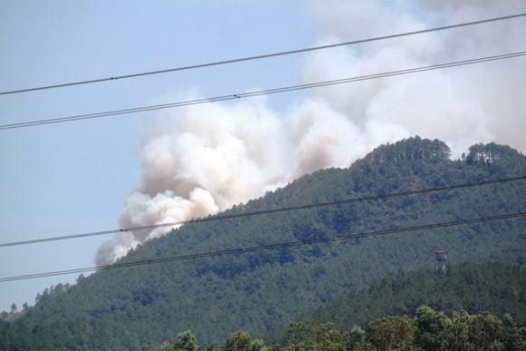 Nắng nóng gay gắt, liên tục xảy ra cháy rừng ảnh 3