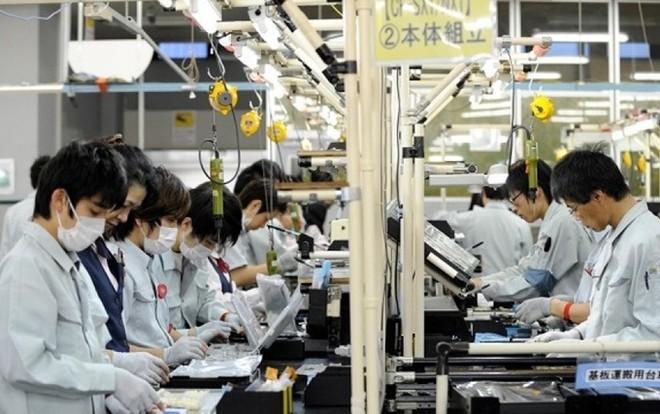 Loại 8 doanh nghiệp khỏi danh sách phái cử thực tập sinh sang Nhật Bản ảnh 1