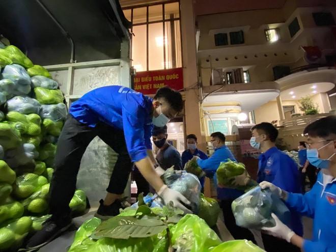 Thành đoàn Hà Nội tổ chức 6 điểm tiêu thụ nông sản giúp nông dân Hải Dương ảnh 1
