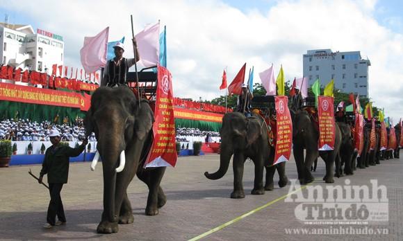 Bảo tồn voi Tây Nguyên: Vẫn nói nhiều và làm trên... giấy ảnh 2