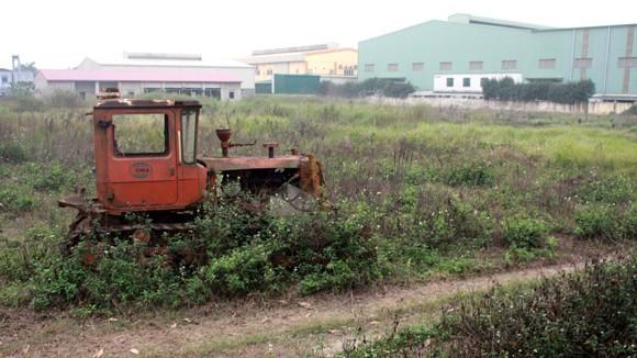 Hàng loạt sai phạm về đất đai tại huyện Thanh Trì, Hà Nội ảnh 1
