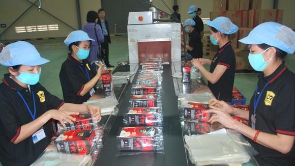 Khánh thành nhà máy cà phê hòa tan lớn nhất châu Á ảnh 1