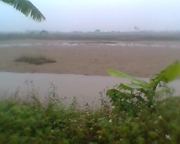 Vụ cưỡng chế thu hồi đất tại xã Vinh Quang: Kiểm điểm 50 cán bộ và 25 tổ chức ảnh 1