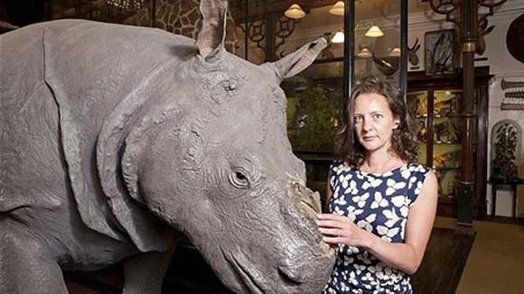 Bẻ sừng tê giác trong bảo tàng ảnh 1