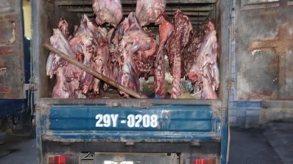 Phát hiện 3 vụ vận chuyển thịt bò lậu ảnh 1